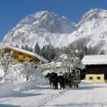 files-WinterPferdePferdeschlittenLarge